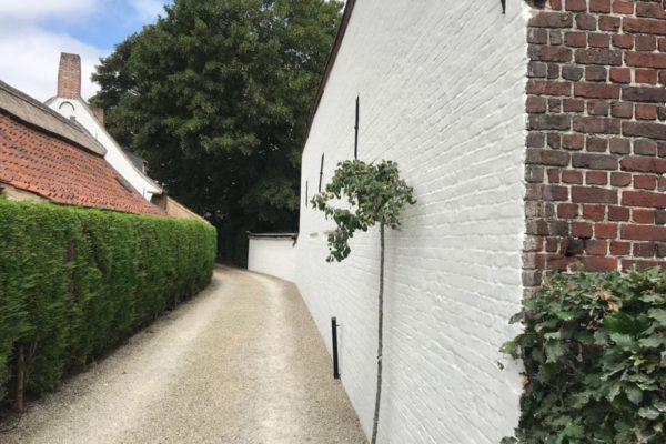 Kaleien oude muur