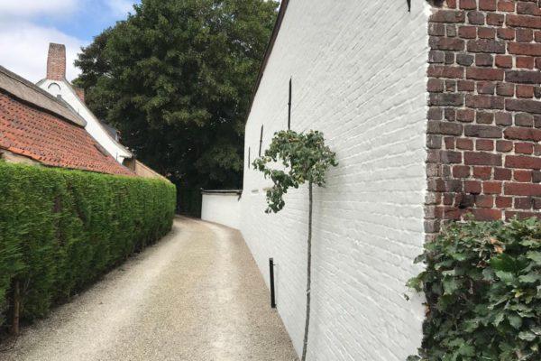 Kaleien muur Sint-Martens-Latem